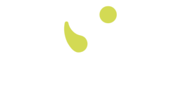 Cellaouate - back
